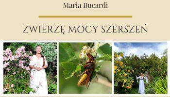 MARIA BUCARDI Zwierzę Mocy szerszeń Mądrość Wyższa, respekt, pokonanie krytyki