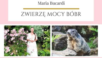 Maria Bucardi Zwierzę Mocy znaczenie Bóbr