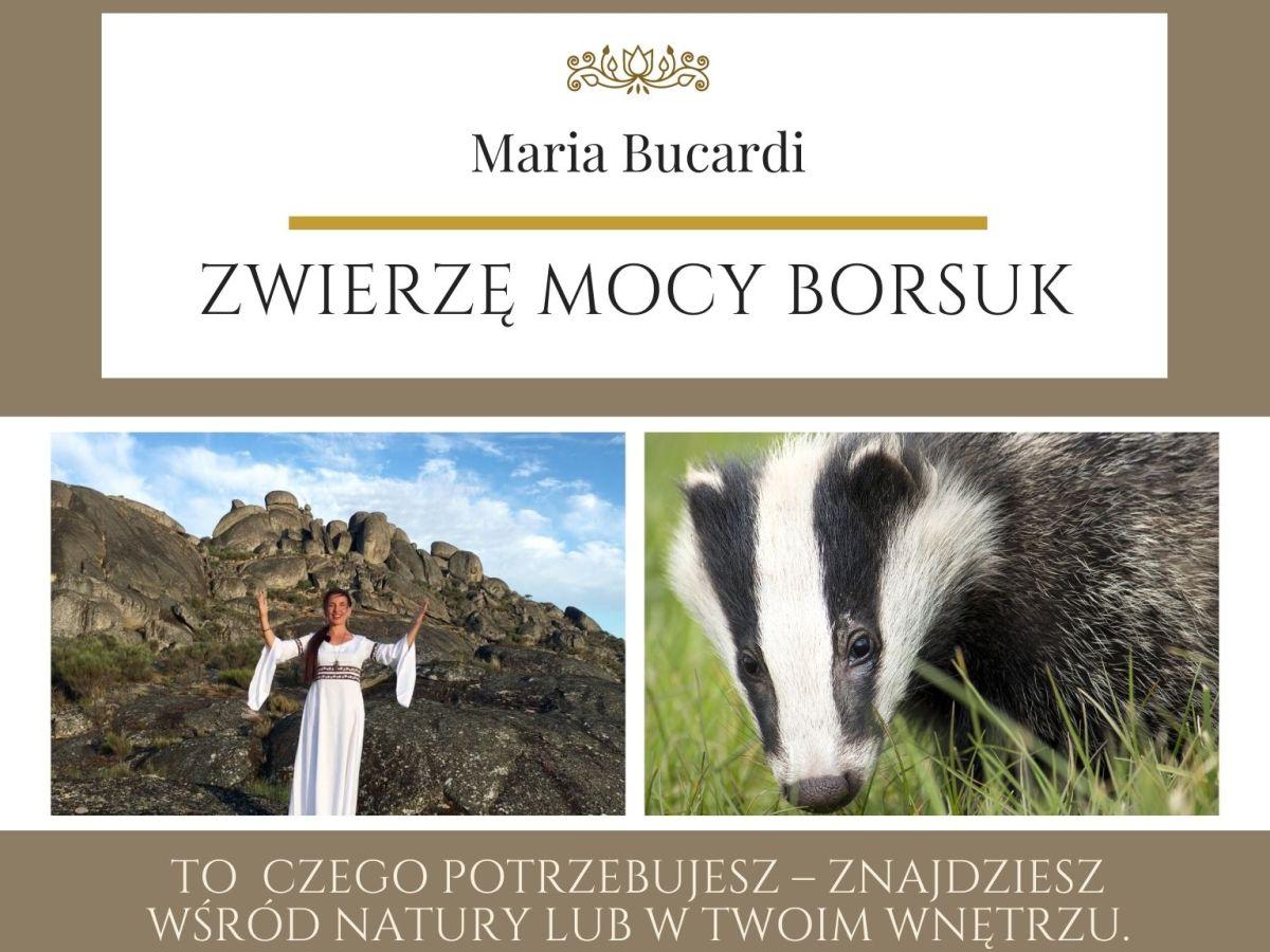 Maria Bucardi Zwierzę Mocy znaczenie Borsuk