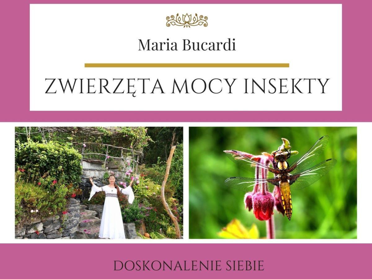 Maria Bucardi Zwierzę Mocy znaczenie Insekty
