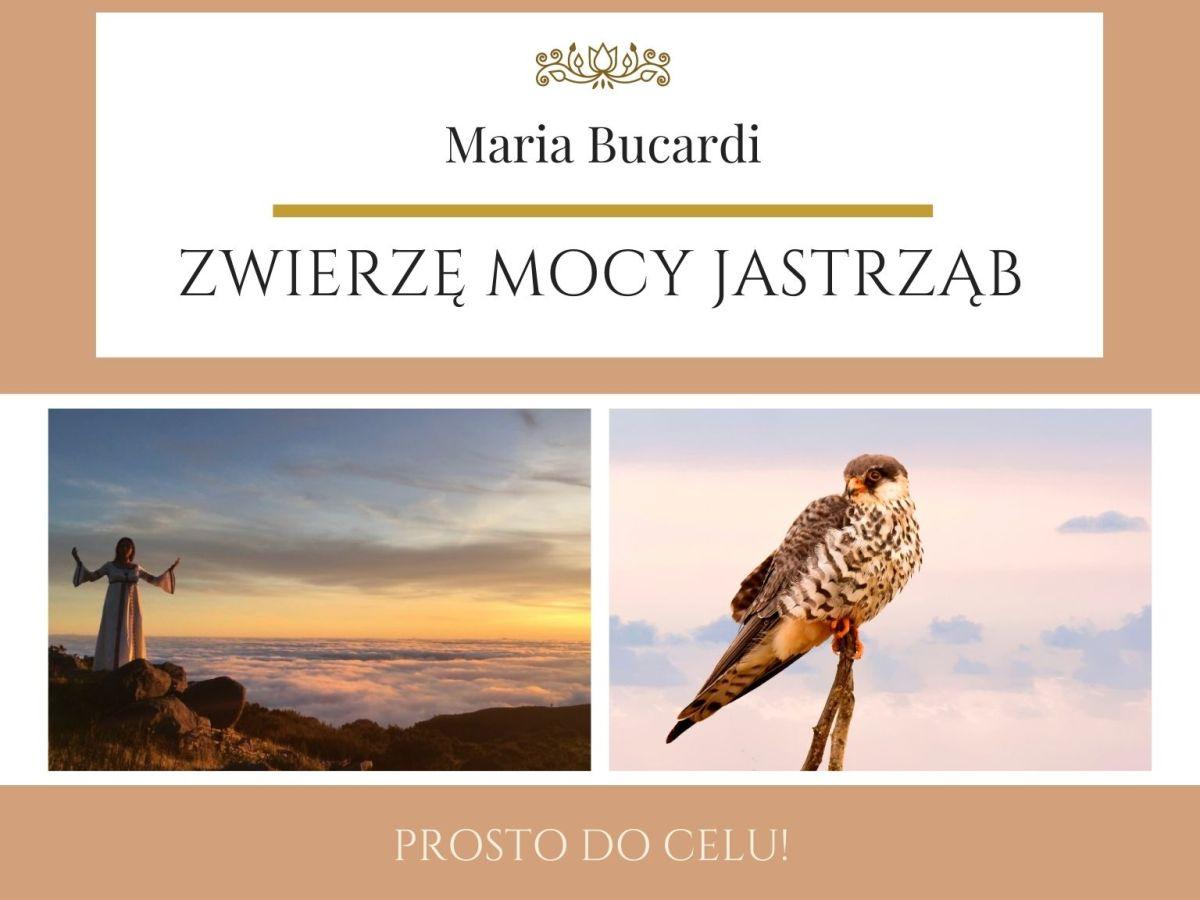 Maria Bucardi Zwierzę Mocy znaczenie Jastrząb