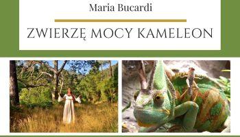 Maria Bucardi Zwierzę Mocy znaczenie Kameleon