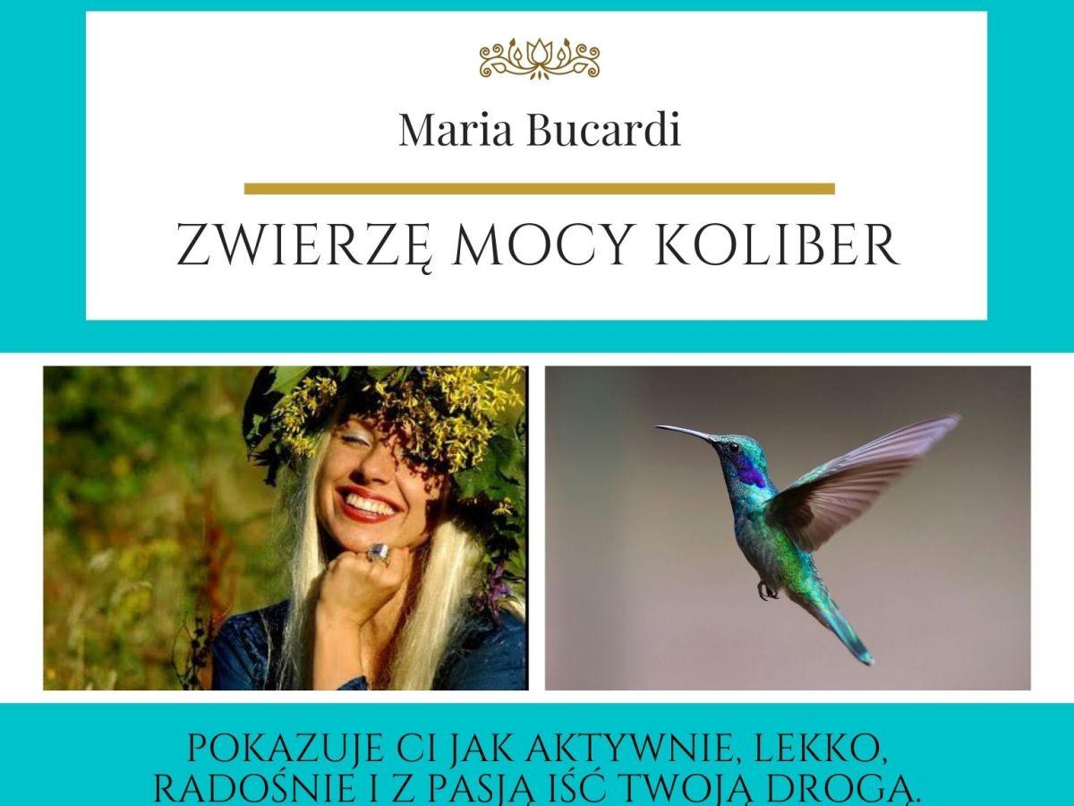 Maria Bucardi Zwierzę Mocy znaczenie Koliber