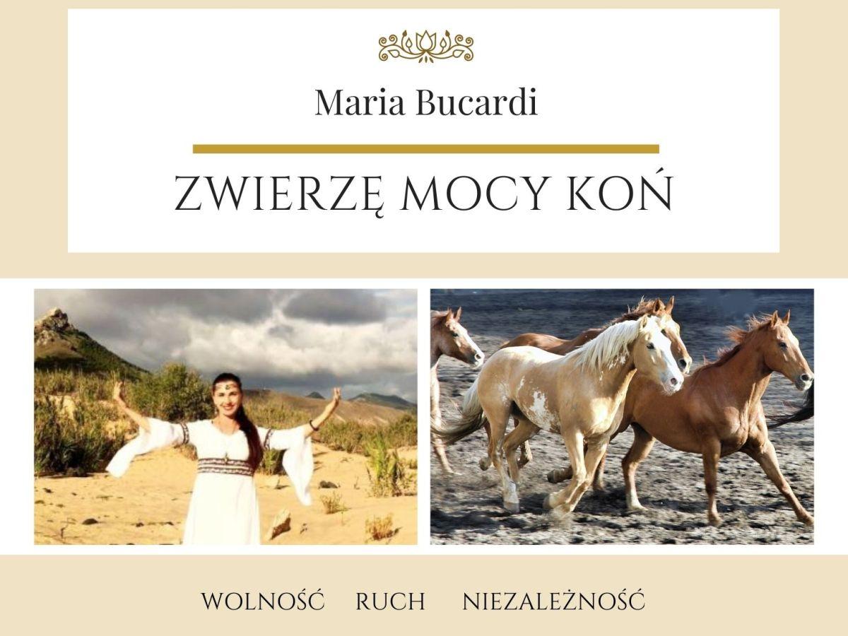 Maria Bucardi Zwierzę Mocy znaczenie Koń
