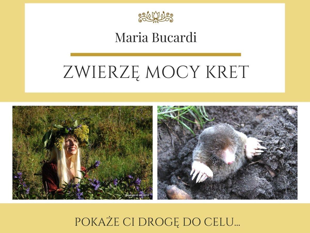 Maria Bucardi Zwierzę Mocy znaczenie Kret