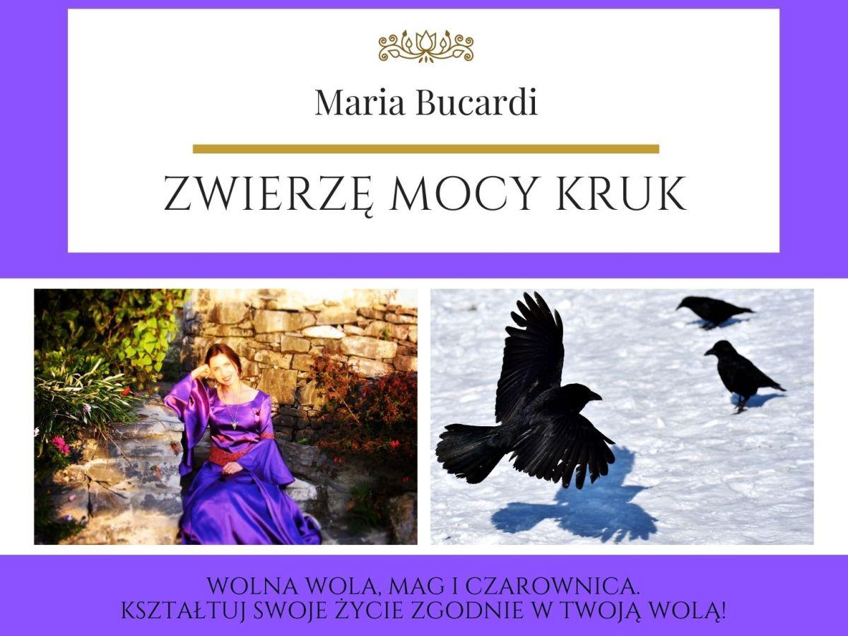 Maria Bucardi Zwierzę Mocy znaczenie Kruk