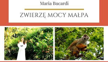 Maria Bucardi Zwierzę Mocy znaczenie Małpa