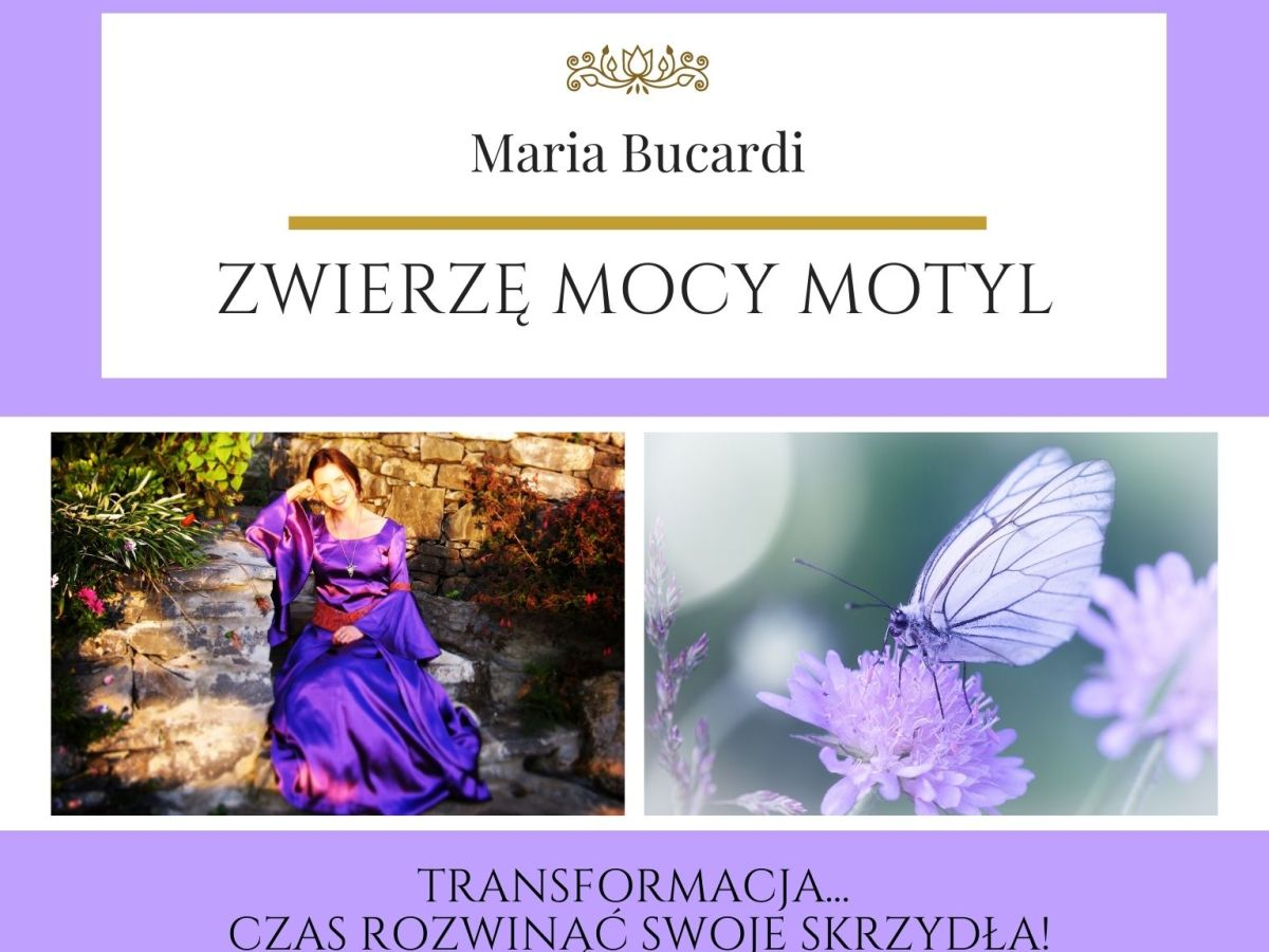 Maria Bucardi Zwierzę Mocy znaczenie Motyl