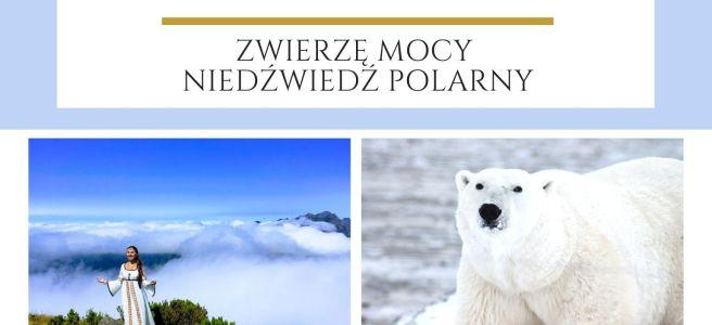 Maria Bucardi Zwierzę Mocy znaczenie Niedźwiedź polarny