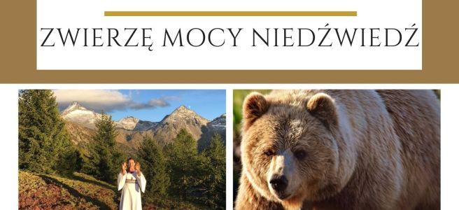 Maria Bucardi Zwierzę Mocy znaczenie Niedźwiedź