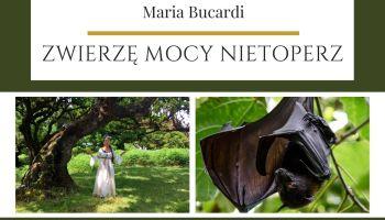 Maria Bucardi Zwierzę Mocy znaczenie Nietoperz