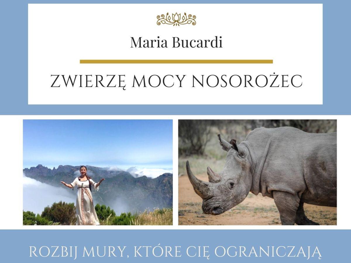 Maria Bucardi Zwierzę Mocy znaczenie Nosorożec