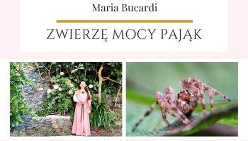 Maria Bucardi Zwierzę Mocy znaczenie pająk, sieć