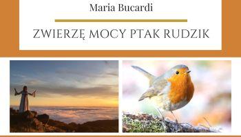 Maria Bucardi Zwierzę Mocy znaczenie ptak Rudzik