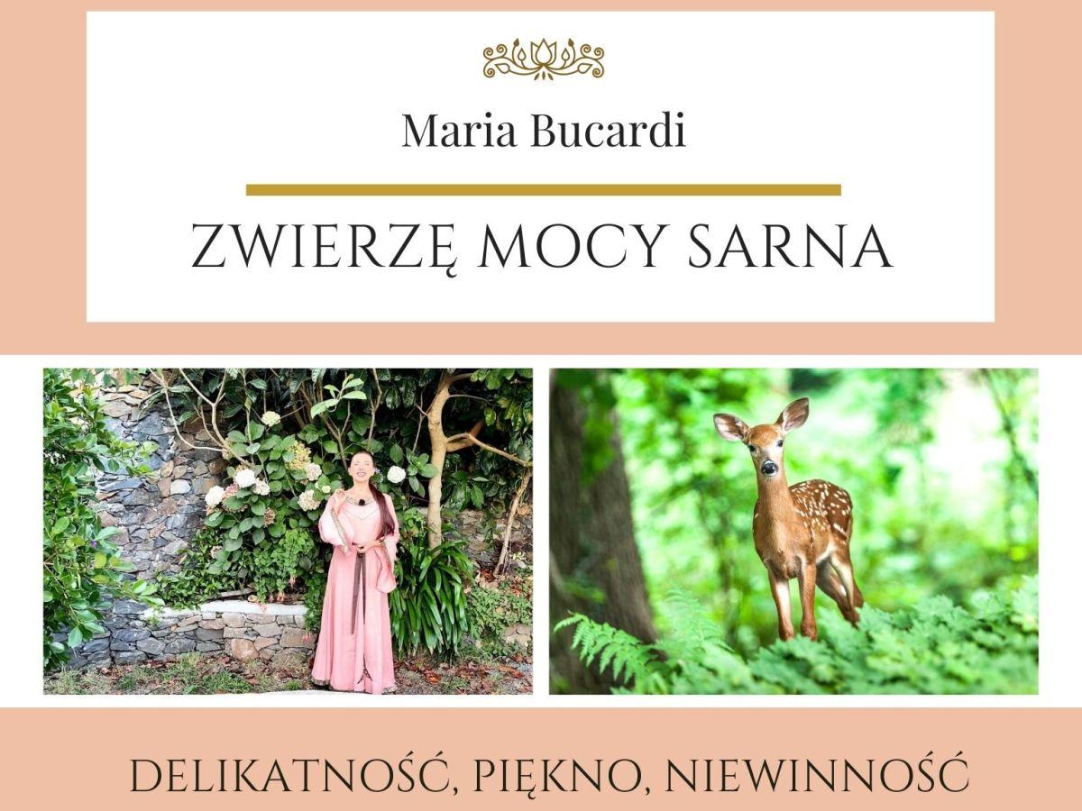 Maria Bucardi Zwierzę Mocy znaczenie Sarna