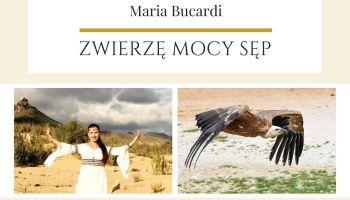 Maria Bucardi Zwierzę Mocy znaczenie Sęp