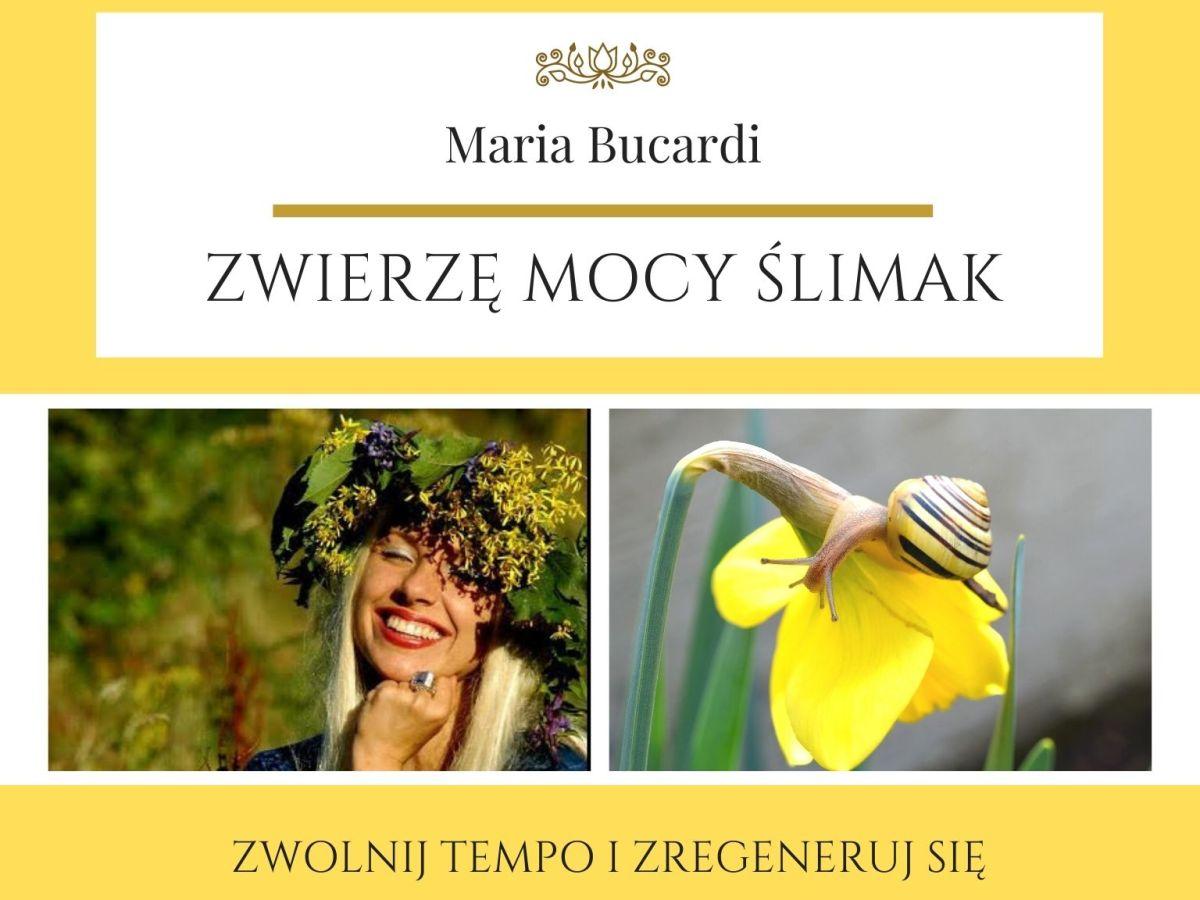 Maria Bucardi Zwierzę Mocy znaczenie ślimak