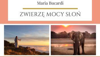 Maria Bucardi Zwierzę Mocy znaczenie Słoń