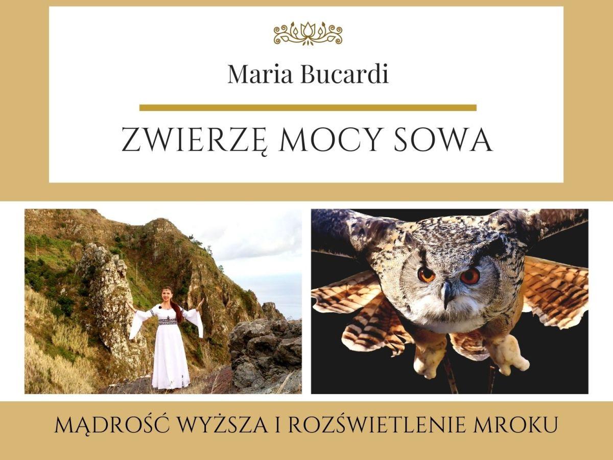 Maria Bucardi Zwierzę Mocy znaczenie Sowa