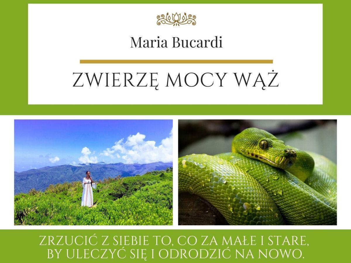 Maria Bucardi Zwierzę Mocy znaczenie Wąż