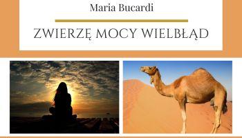 Maria Bucardi Zwierzę Mocy znaczenie Wielbłąd