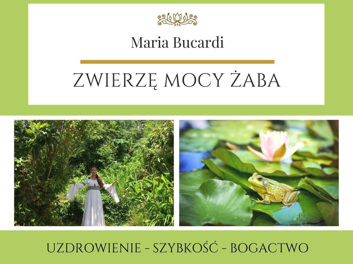 Maria Bucardi Zwierzę Mocy znaczenie Żaba