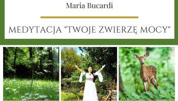 Zwierzę Mocy znaczenie Maria Bucardi - Medytacja Moje Zwierzę Mocy