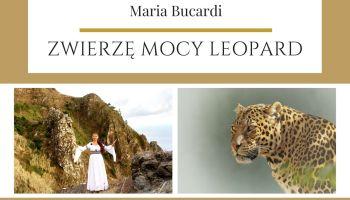 Zwierzę Mocy znaczenie wg Maria Bucardi Leopard : lampart: pantera