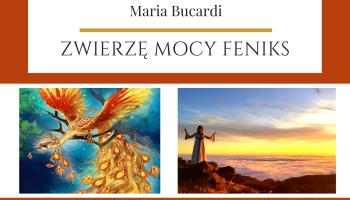 Zwierzę Mocy Feniks znaczenie wg Maria Bucardi