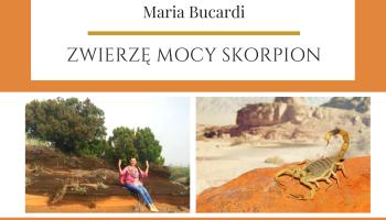 Zwierzę Mocy Skorpion, transformacja, znaczenie wg Maria Bucardi