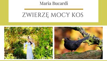Kos Zwierzę Mocy znaczenie wg Marii Bucardi
