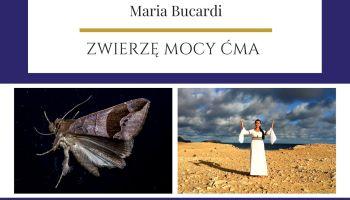 Ćma Zwierze Mocy znaczenie Maria Bucardi