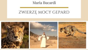 Gepartd Zwierze Mocy Maria Bucardi