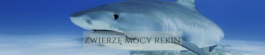 Zwierzę Mocy Rekin znaczenie Maria Bucardi