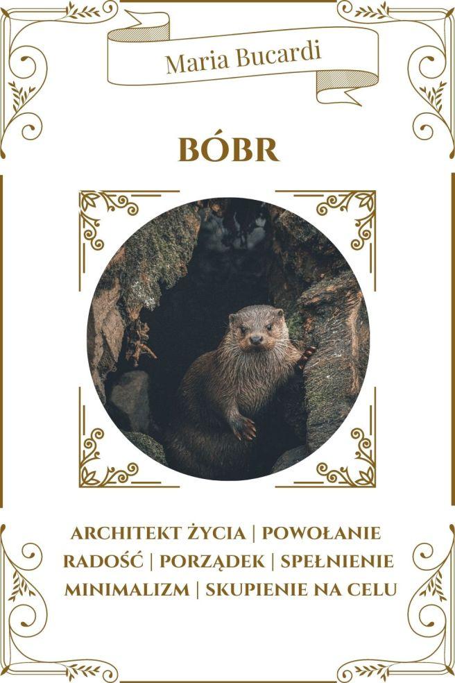 Bóbr Zwierzę Mocy Karty Marii Bucardi