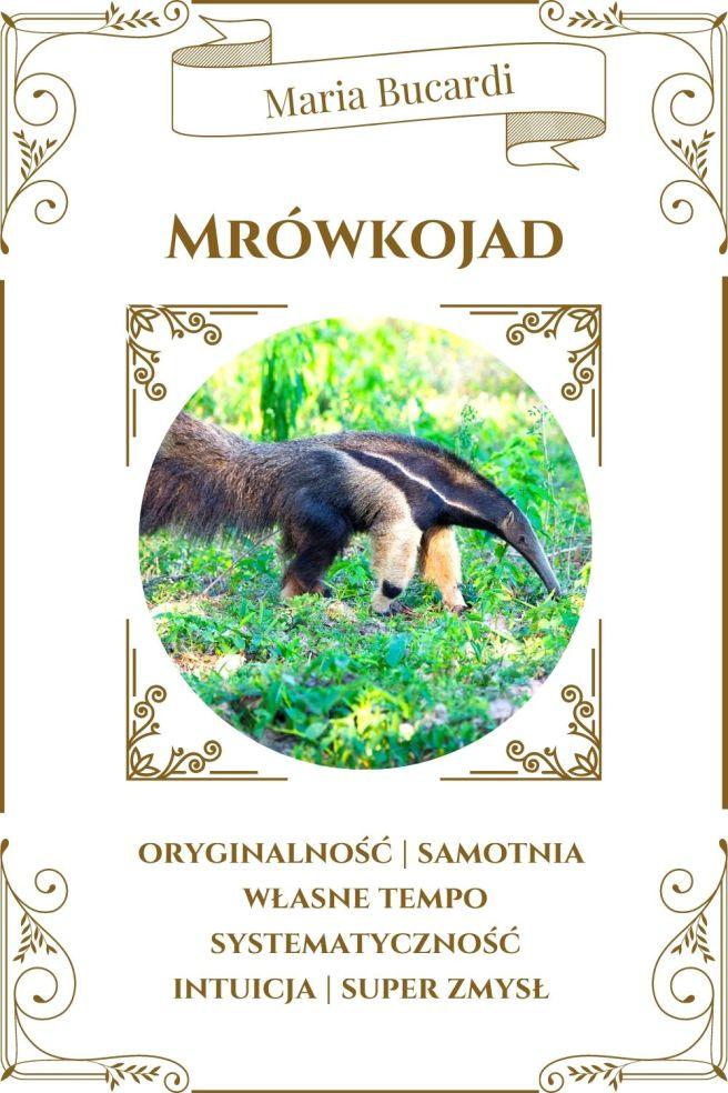 Mrówkojad Karta Zwierzę Mocy I Maria Bucardi