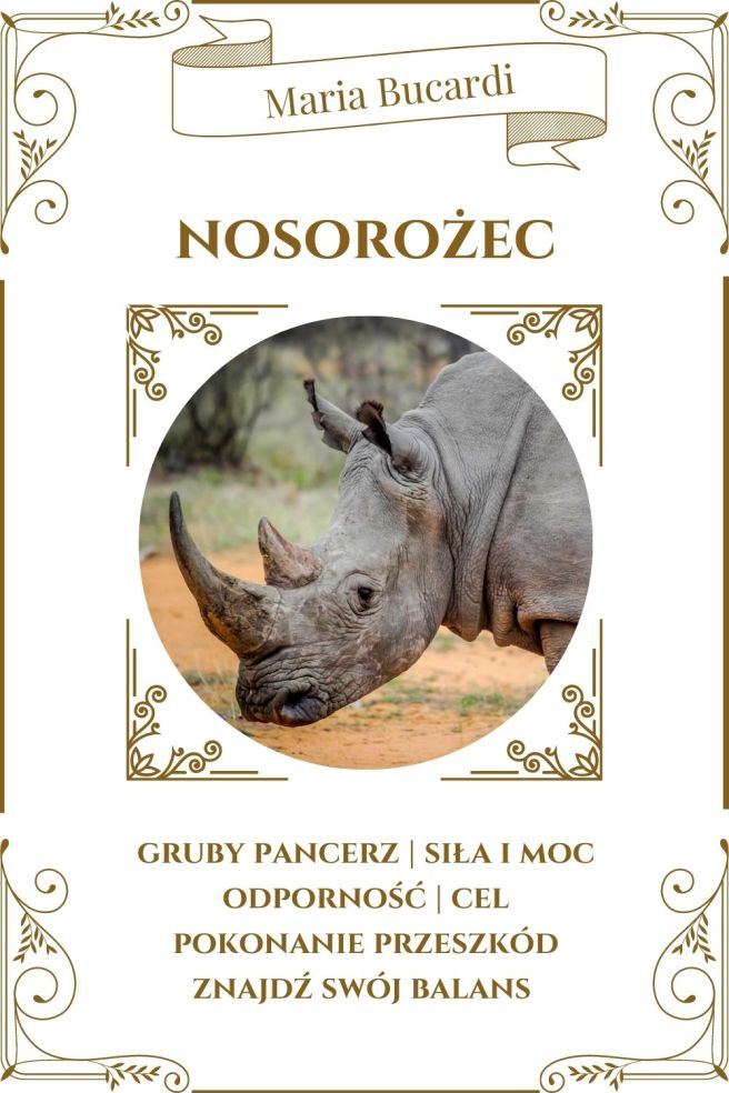 Nosorożec Zwierzę Mocy Karty Marii Bucardi