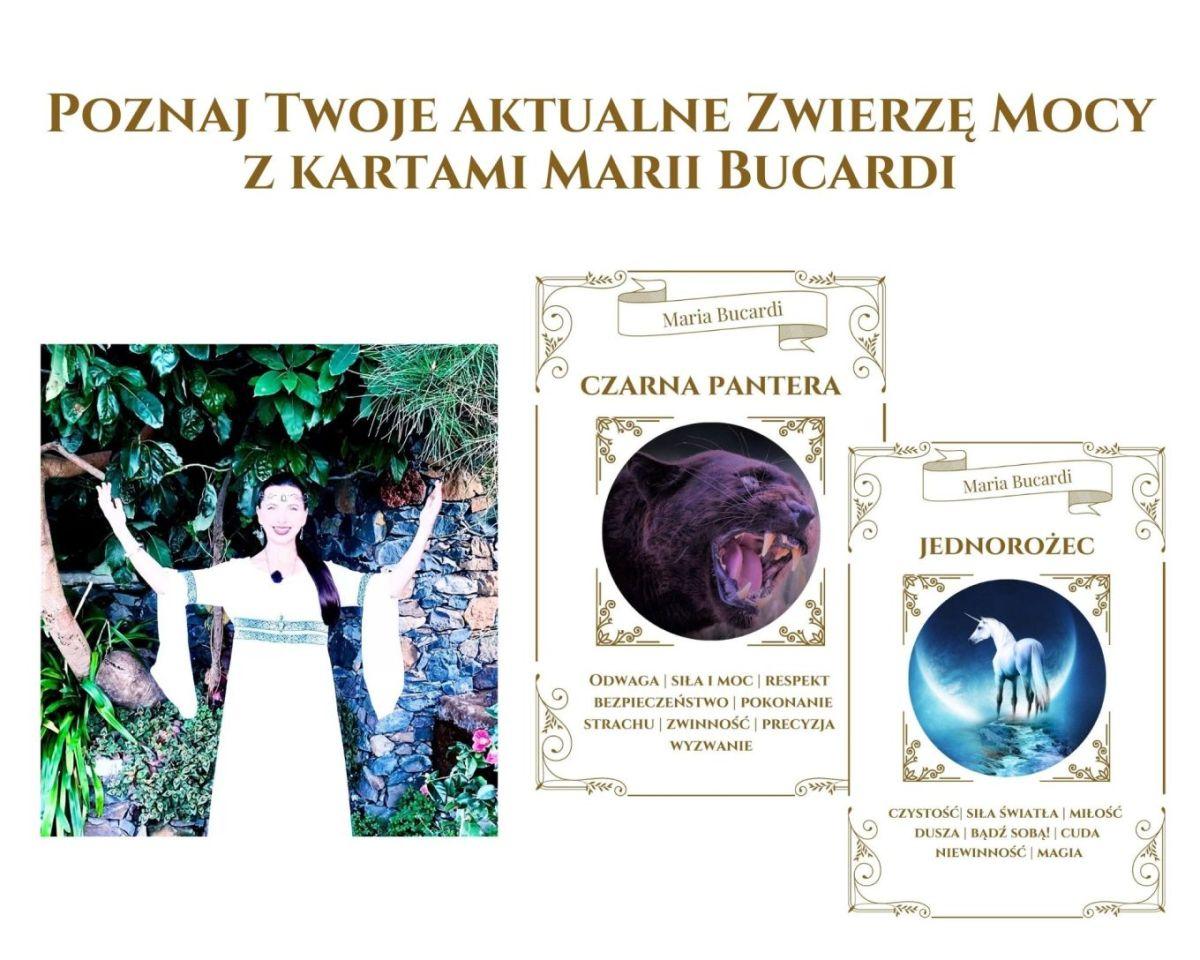 orakel-zwierzeta-Mocy-Marii-Bucardi, zwierzę mocy znaczenie, zwierzęta mocy karty