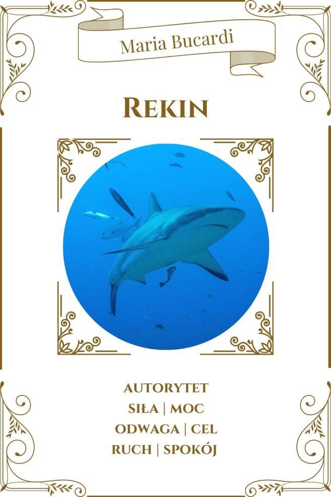 Rekin Karta Zwierzę Mocy I Maria Bucardi