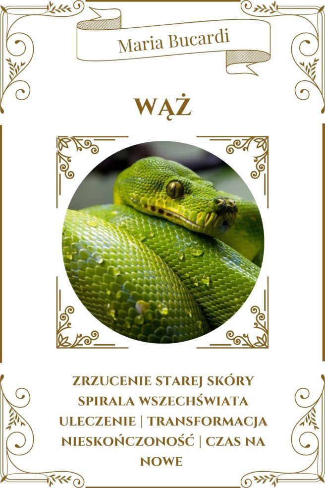 Wąż Zwierzę Mocy Karty Marii Bucardi