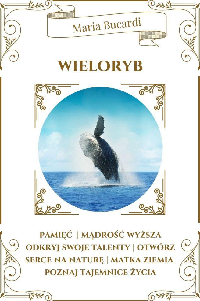 Wieloryb Zwierzę Mocy Karty Marii Bucardi