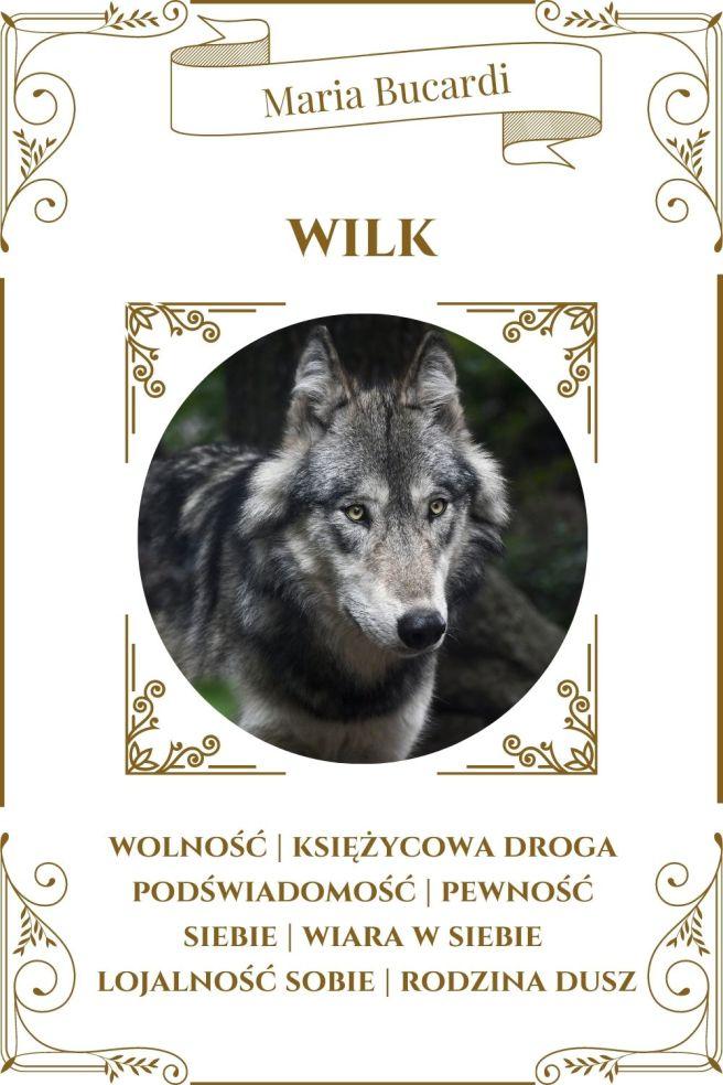 Wilk Zwierzę Mocy Karty Marii Bucardi