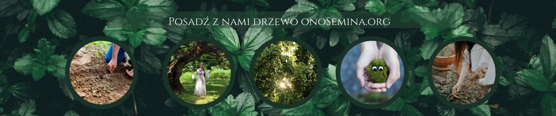 onoSemina.org Maria bucardi, posadź drzewo, ekologia, środowisko