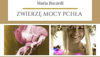 Pchła Zwierzę Mocy Maria Bucardi