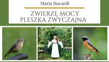 Pleszka zwyczajna Zwierzę Mocy Maria Bucardi